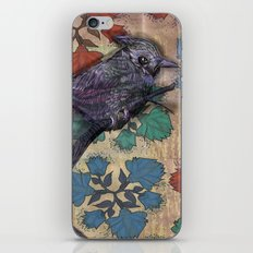Weird bird iPhone & iPod Skin