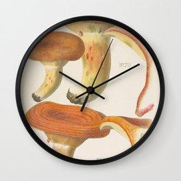 MUSHROOMS Lactarius deliciosus - saffron milk cap Wall Clock