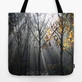 Autumn Sunbeams Tote Bag