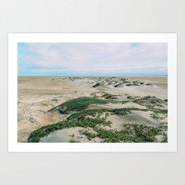 Desert Tufts Art Print