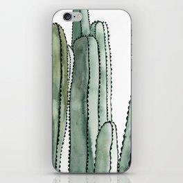 Desert Cactus Cluster iPhone Skin