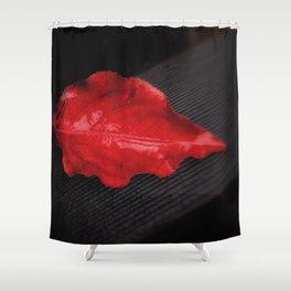 A Wet Fall Shower Curtain