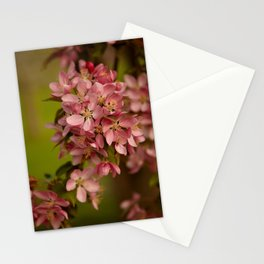Fantasy Island Stationery Cards
