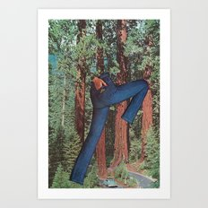 sequoia chic Art Print