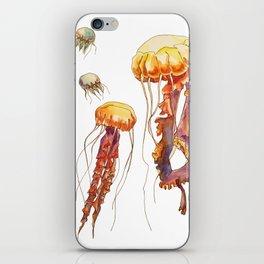 world of jellyfish iPhone Skin