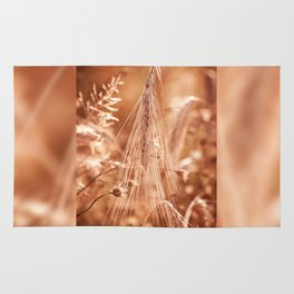 Golden old withered cereal ear grow Rug