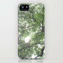 Summer Rays iPhone Case