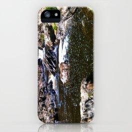 River II iPhone Case
