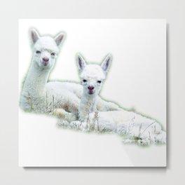 Alpaca best friends Metal Print
