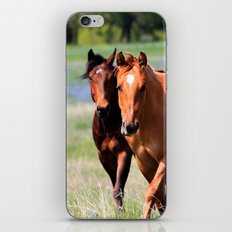 Horses & Bluebonnets II iPhone Skin