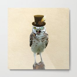 Lord Of The Owls Metal Print