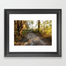 Savannah Morning Road Framed Art Print