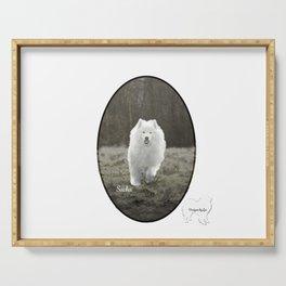 Sacha's World; Samoyed Portrait Serving Tray