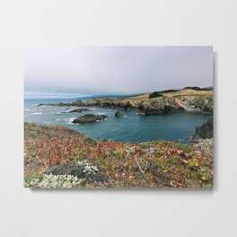 Sea Ranch in Bloom Metal Print