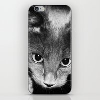 kitten iPhone & iPod Skins featuring kitten by Bunny Noir