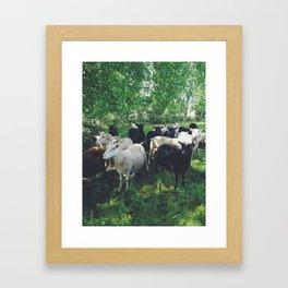 Cheep Framed Art Print