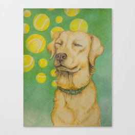 Tennis Ball Heaven Canvas Print