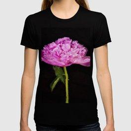 Monsieur Jules Elie Pink Peony T-shirt
