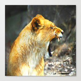 I'm Not Yelling At You Canvas Print