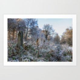 Frosty Morn Art Print