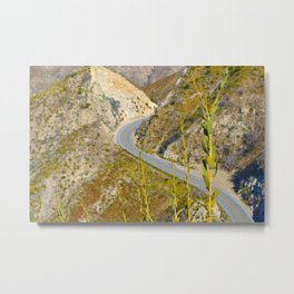 Serpentine Curve Metal Print