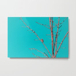 The end of winter Metal Print