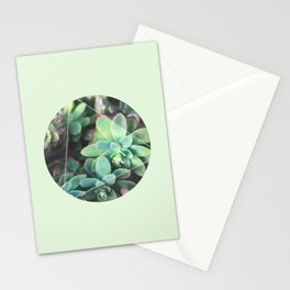 Green Roses in a box Stationery Cards