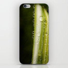 Garden Raindrops iPhone Skin