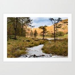 Lake District landscape Art Print