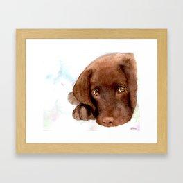Chocolate Lab Puppy Framed Art Print