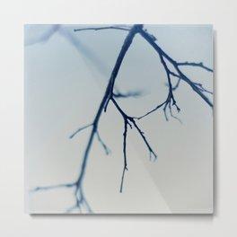 bare blue Metal Print