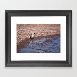 Gull in the Waves Framed Art Print