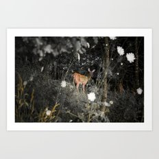 Didi the Deer Art Print