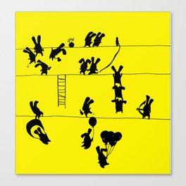 Fighting Bunnies Canvas Print