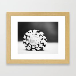 Black and White Seashell Photography, Shell Photo, Neutral Beach Art, Black White Coastal Photo Framed Art Print