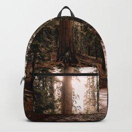 Walking Sequoia 4 Backpack