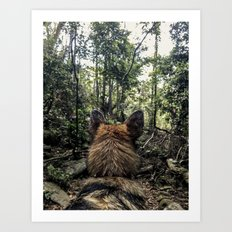 Brisa in the woods Art Print