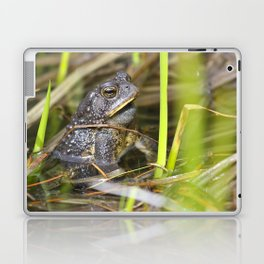 Toad in the pond Laptop & iPad Skin
