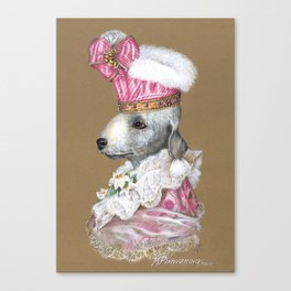 Bedlington Terrier. The Actress Canvas Print