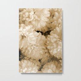 Monochrome Abstract Mums Metal Print