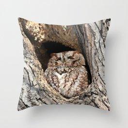Red morph screech owl Throw Pillow