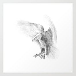 Eagle - pencil drawing Art Print
