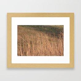 Fallow fields Framed Art Print