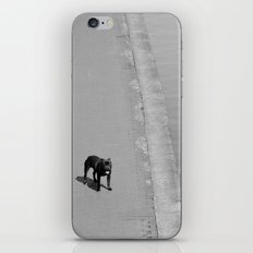 way out in the water... iPhone & iPod Skin