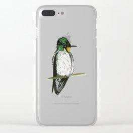 Juan Fernandez Firecrown Clear iPhone Case