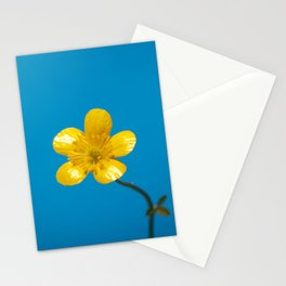 Buttercup Stationery Cards