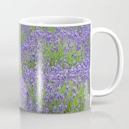 Purple lavender garden Coffee Mug