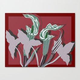 Arum Lilies IV. Canvas Print