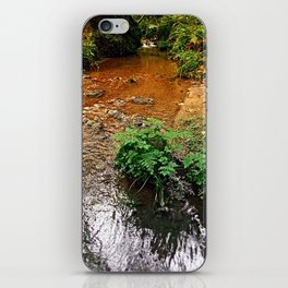 Little stream in autumn colors | landscape photography iPhone Skin