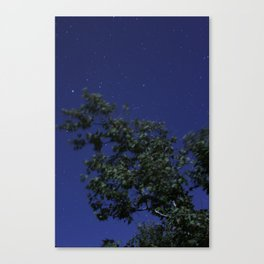 Full Moon Abstract  Canvas Print